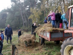 gemaaid-gras-afvoeren-web